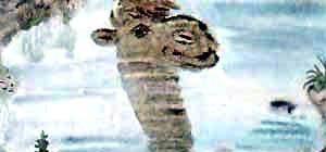 Откуда у верблюда горб