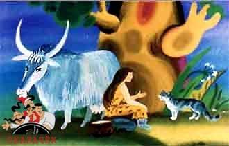 женщина дикая корова и кошка