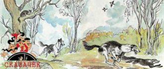 Кошка и лисица-Авторские