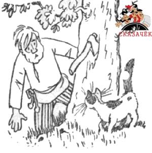 Котик - золотой лобик - читать сказку онлайн - Белорусские ...