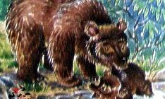 Купание медвежат-Бианки В. В.