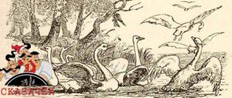 Лебединое гнездо-Авторские