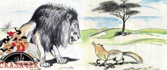 Лев и лисица-Авторские