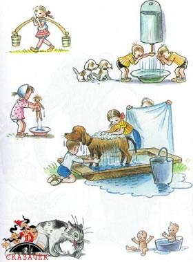 Мойдодыр дети котята щенята