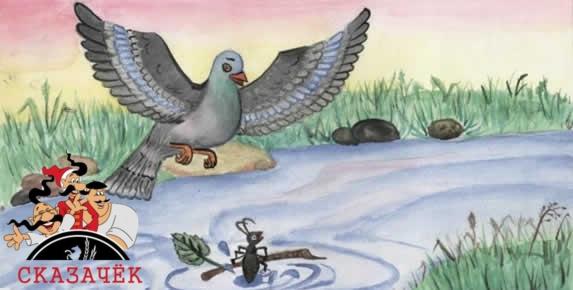 muravej-i-golubka
