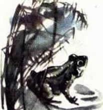Небесный слон-Бианки В. В.