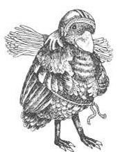 Неправый суд птиц-Народные