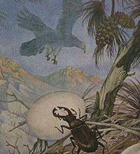 Орел и жук-Басни Эзопа