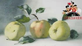 Рассказ о трех яблоках (ночи 19-20)