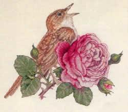 Соловей и роза-Авторские