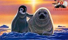 Тюленье прилежание-Стихи