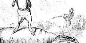 Заяц и лягушки-Жан де Лафонтен