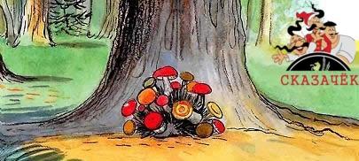 холмик маленький, а на нём грибов видимо-невидимо