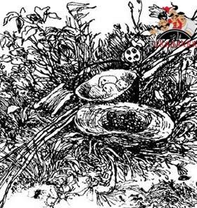рассказ Паустовского Золотой линь