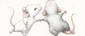 Две мыши