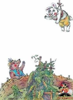 bratets-krolik-i-bratets-medved1