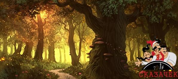 Гимн деревьям