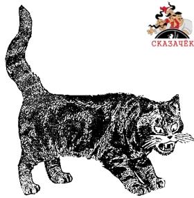 Котенок и Скворец