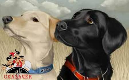 Крестьянин и собаки