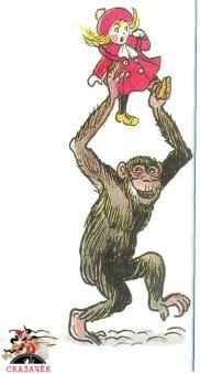 Крокодил обезьяна  украла девочку