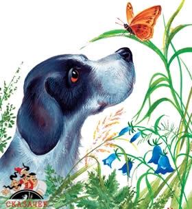 Охота за бабочкой рассказ Пришвина читать