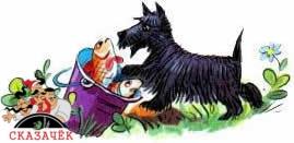 Похититель собак
