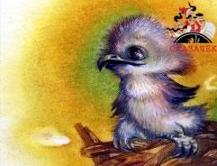 Птенцы беркутa