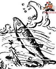 Сын рыбака Хакима