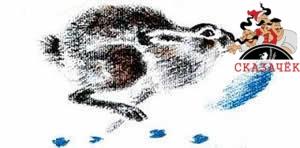 Снежная книга Бианки