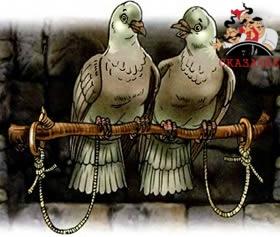 сказка Совет голубей