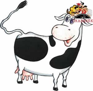 Суд о коровах
