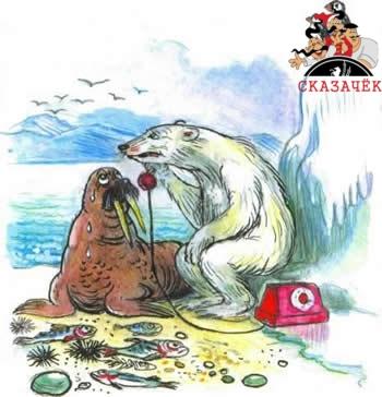 Телефон белый медведьи морж север полюс