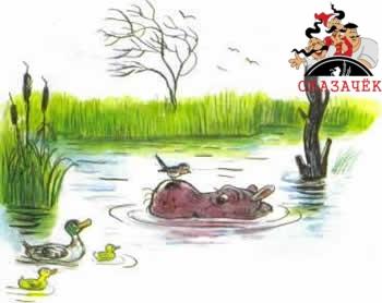 Телефон бегемот болото вода