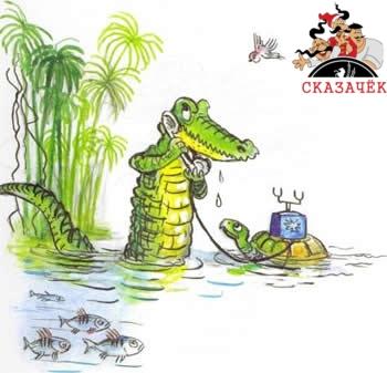 Телефон крокодил черепаха вода