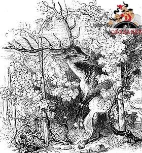 Виноградник и олень